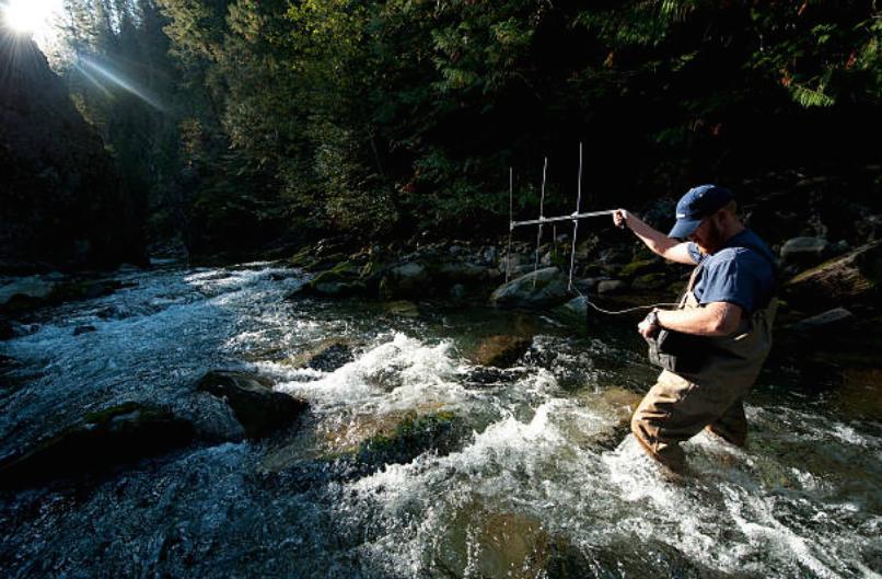 pescare trota torrente